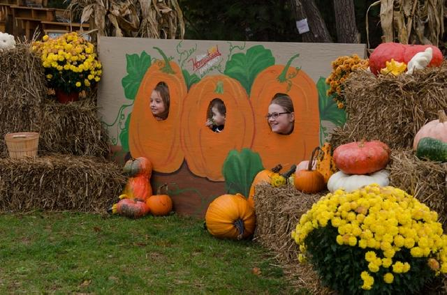Fall Festival Board At the Market